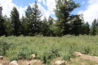 Home for sale: Lot 72 High Country Rd., Lava Hot Springs, ID 83246