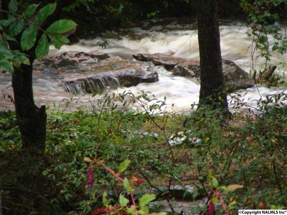 154 County Rd. 594, Sylvania, AL 35988 Photo 45