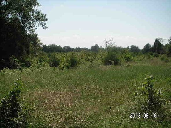 40 Acres M/L, Clarksville, AR 72830 Photo 1