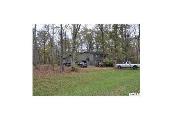 3896 County Rd. 38, Sawyerville, AL 36776 Photo 13