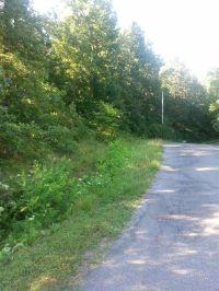 Home for sale: 360 Estates Dr., Gilbertsville, KY 42044