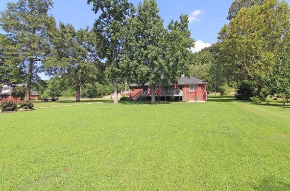 1064 Cr 578, Rogersville, AL 35652 Photo 32