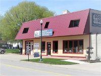 Home for sale: 320 West Illinois Avenue, Morris, IL 60450