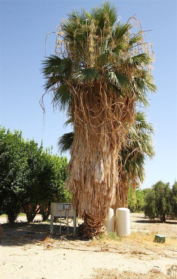 80865 Vista Bonita Trail, La Quinta, CA 92253 Photo 34