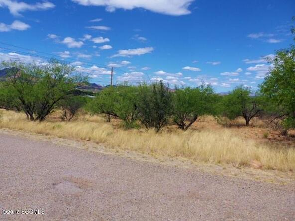 20 Calle Dinamarca, Rio Rico, AZ 85648 Photo 6