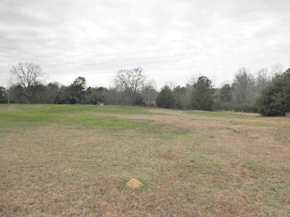 341 Willis Turk Rd. Road, Auburn, AL 36832 Photo 4