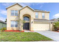 Home for sale: 1729 Open Field Loop, Brandon, FL 33510