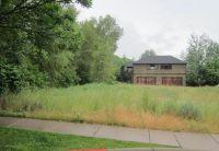 Home for sale: 336 Allison Ln., Basalt, CO 81621