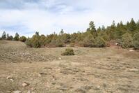 Home for sale: Tr 11-B, Unit 1, Elk Hill Rd., Ponderosa, Chama, NM 87520