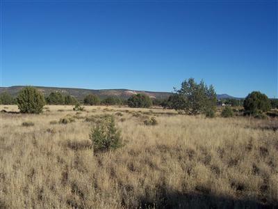 1357 W. Pinto Dr., Ash Fork, AZ 86320 Photo 17