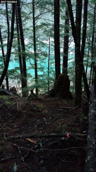 18320 Tee Way, Juneau, AK 99801 Photo 9