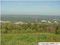 Home for sale: Citadel Rock Rd., Fort Payne, AL 35967