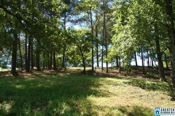 5.5 Acres Hwy. 431, Wedowee, AL 36278 Photo 4
