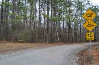 Home for sale: 5 Acre Riverbend Rd., Abbeville, GA 30233