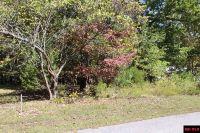 Home for sale: Lot 22 Walden Ln., Bull Shoals, AR 72619