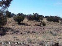 Home for sale: Lots 5 & 9 Carrizo Ranch, Saint Johns, AZ 85936