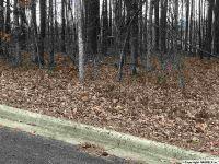 Home for sale: 13 Cade Cir., Leesburg, AL 35983