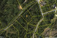 Home for sale: 00 Pine View Rd. Lot 19, Springville, TN 38256
