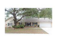 Home for sale: 2210 Spyglass Hill Cir., Valrico, FL 33596