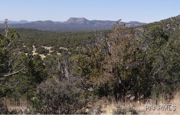 808 Sierra Verde Ranch, Seligman, AZ 86337 Photo 14