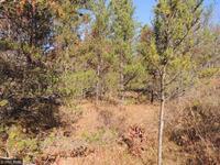 Home for sale: L3b1 Eagle Ridge Dr., Baxter, MN 56425