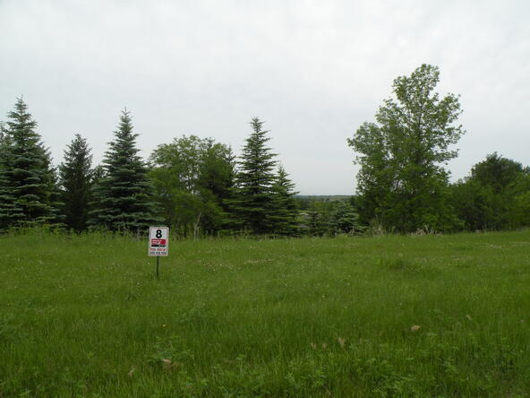 Lot 9 Combe St., Ripon, WI 54971 Photo 3