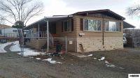 Home for sale: 5190 Honey Bear, Sun Valley, NV 89433