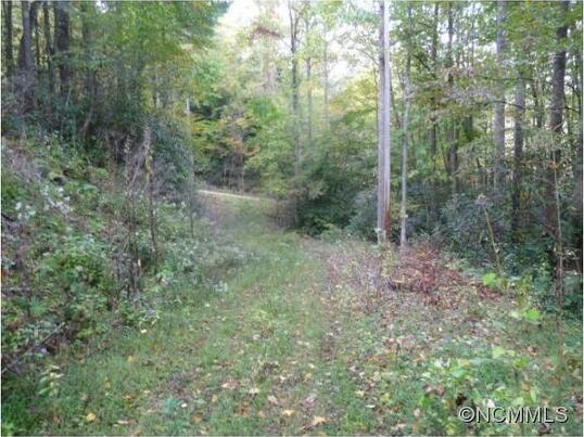 16 Briggs, Robbinsville, NC 28771 Photo 2