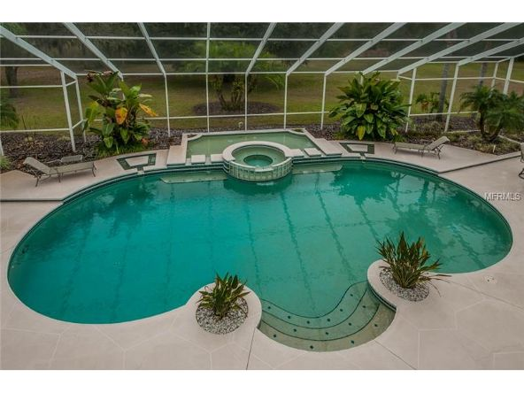 2270 N. Highland Avenue, Tarpon Springs, FL 34688 Photo 16