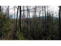 Home for sale: 0 N. Bearwallow Rd., Fletcher, NC 28732
