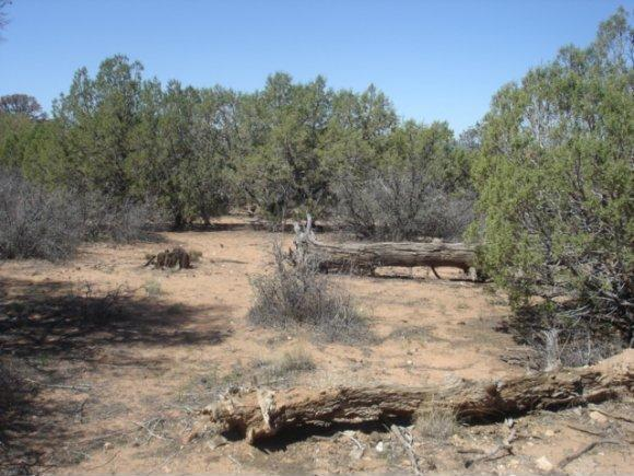 14480 N. Soza Mesa Ln., Prescott, AZ 86305 Photo 14
