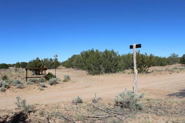 7209 N. Hwy. 191 --, Sanders, AZ 86512 Photo 3