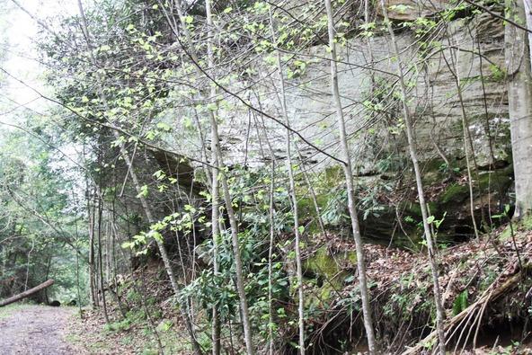 400-4 Cliffview, Campton, KY 41301 Photo 10