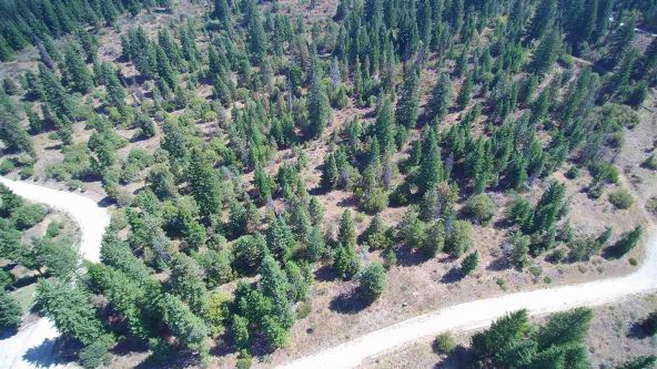Lot 6 Forest Highlands, Boise, ID 83716 Photo 10