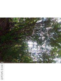 Home for sale: 131 N.W. 131st Ct., Reddick, FL 32686