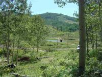 Home for sale: 185 Cr 286/Upper Bear Mtn., Kremmling, CO 80459
