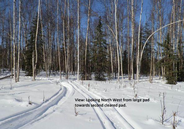 24810 W. Long Lake Rd., Willow, AK 99688 Photo 2