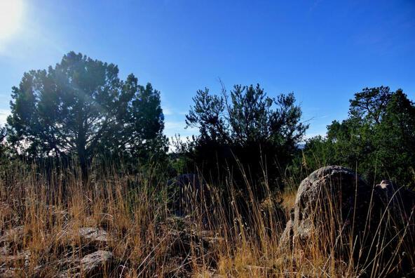 15325 N. Escalante Way, Prescott, AZ 86305 Photo 13