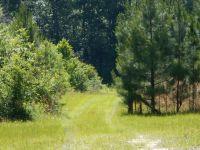 Home for sale: 3878 River Rd., Vernon, FL 32462