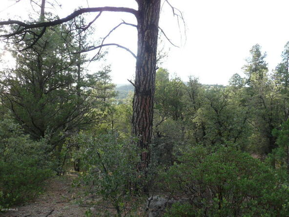 8b N. Chamberlain Trail, Young, AZ 85554 Photo 28