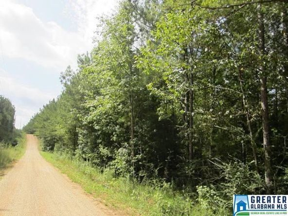 3.27 Acres Thomas Ln., Ashland, AL 36251 Photo 6