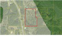 Home for sale: 152 Oscar Holmes Rd., Wewahitchka, FL 32465
