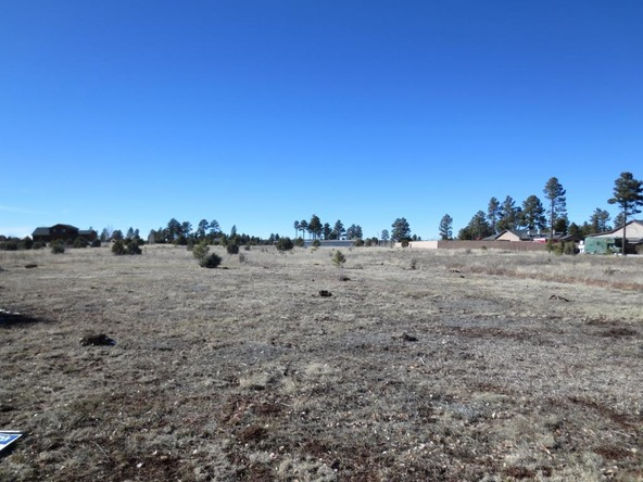 2728 Bain Trail, Overgaard, AZ 85933 Photo 6