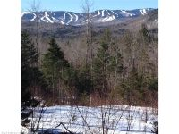 Home for sale: Tbd Glades View Ave./Great Brook Preserve, Newry, ME 04261