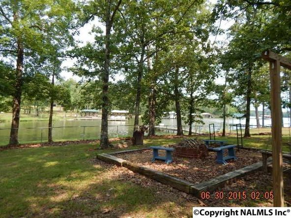 95 County Rd. 604, Cedar Bluff, AL 35959 Photo 33