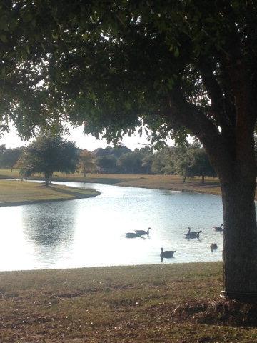 33 Olde Park Rd., Gulf Shores, AL 36542 Photo 5