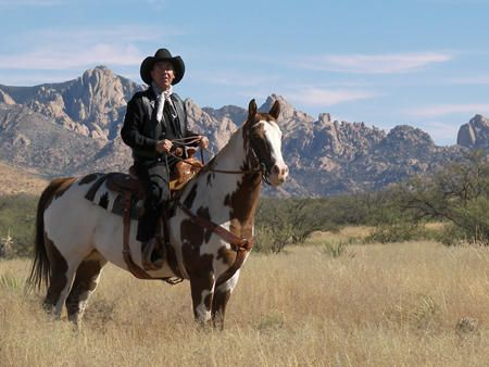 697092 E. Horse Ranch Rd., Saint David, AZ 85630 Photo 10
