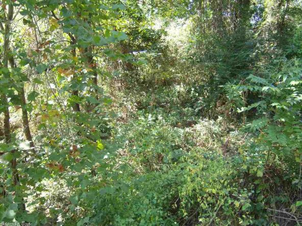 3179 Riverbend Rd., Heber Springs, AR 72543 Photo 13