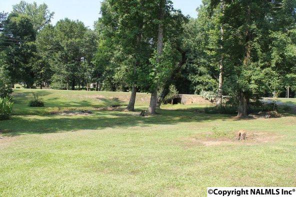 1210 County Rd. 23, Geraldine, AL 35974 Photo 33