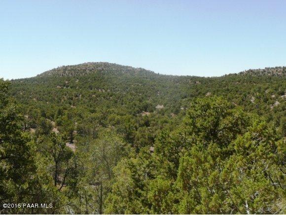1024 Sierra Verde Ranch, Seligman, AZ 86337 Photo 3